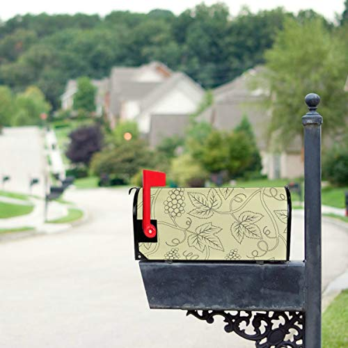 - JGYJF Beautiful Bunches of Grapes Mailbox Covers Standard Size Original Magnetic Mail Cover Letter Post Box 21