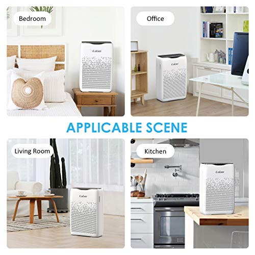 COLZER Air Purifier with True HEPA Air Filter, Air Purifier for Bedroom, for Spaces Up to 450 Sq Ft, Perfect for Home/Office with Filter (EPI-186)