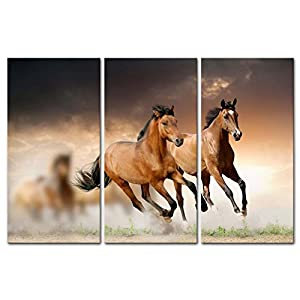 Canvas Print Wall Art Painting For Home Decor Running Wild Horse Brown  Horses Galloping In Sunset 3 Piece Panel Paintings Modern Giclee Artwork  The Picture ...
