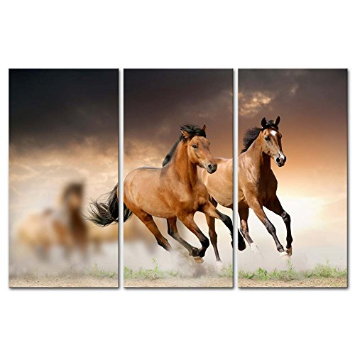 Canvas Print Wall Art Painting for Home Decor Running Wild Horse Brown Horses Galloping in Sunset 3 Piece Panel Paintings Modern Giclee Artwork The Picture for Living Room Decoration Animal ()