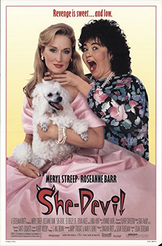 "Private: She Devil 1989 Authentic 27"" x 41"" Original Movie Poster Rolled Very Fine, Fine Meryl Streep Comedy U.S...."