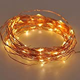 IREALIST Copper Wire Starry LED String Light 100 Leds 33 ft Rope Lights For Seasonal Decorative Christmas Holiday Wedding Parties