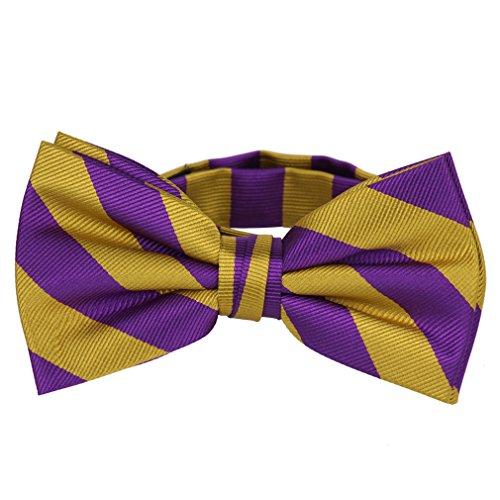 PBT-JCS-ADF-1-21 - Men's College Repp Stripe Pre-tied Bow Tie ()