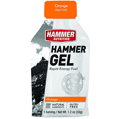 Hammer Nutrition Gel Single Serve Packets MIXED Non-Caffeine Fruit Flavors (12 Pack)