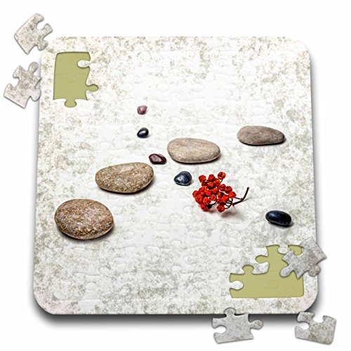 Alexis Photography - Objects Zen - Intersection of stones and pebbles, cluster of red rowan berries. Zen - 10x10 Inch Puzzle (pzl_265666_2)