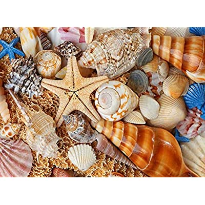 WDSDFEP Jigsaw Puzzles 1000 Pieces Adults Children Kids Wooden Seashell Landscape On The Beach The Children's Educational Toys: Toys & Games