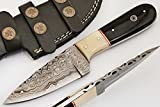 SharpWorld Beautiful Damascus Knife Made Of Remarkable Damascus Steel and Exotic Handle -Best Hunting Knife With Leather Sheath TJ101 (Camel Bone and Horn) For Sale