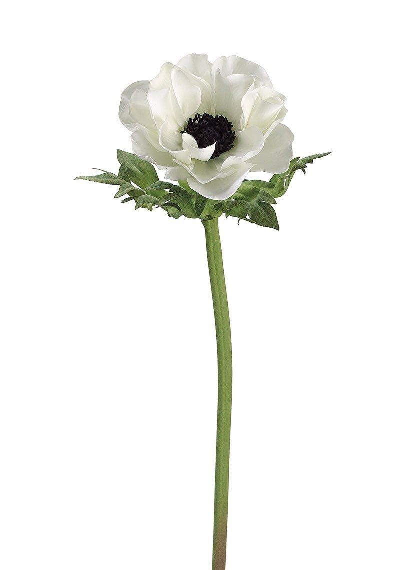 Amazon Allstate Floral Craft Anemone Silk Flower In Cream