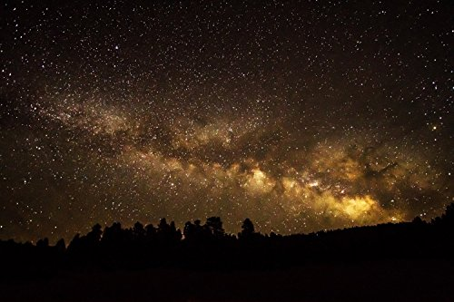 Night Sky Photography Art Print - Picture of Milky Way Over Treeline Silhouette in Colorado Mountains Starry Sky Decor 5x7 to 30x45