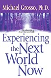 Experiencing the Next World Now, Michael Grosso, 0743471059