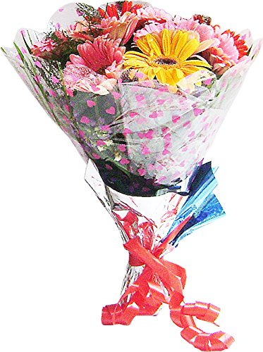 Gerberas hand bunch hand tied bouquet wrapped in cellophane packing gerberas hand bunch hand tied bouquet wrapped in cellophane packing with green fillers ferns mightylinksfo
