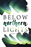 img - for Below Northern Lights book / textbook / text book