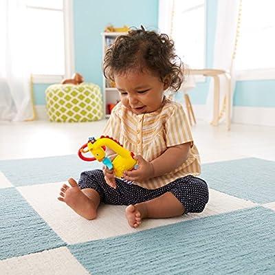Fisher-Price Giraffe Spinner : Baby