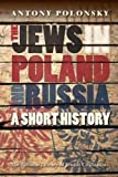The Jews in Poland and Russia: A Short History (Littman Library of Jewish Civilization)