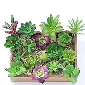 Wootkey 16 Pcs Mixed Artificial Succulent Flowers Plants Unpotted Decor Stems Fake Succulents Plants Bulk Assorted Picks for Home Decor Indoor Wall Garden DIY Decorations 20