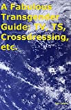 A Fabulous Transgender Guide: TV, TS, Crossdressing, etc.