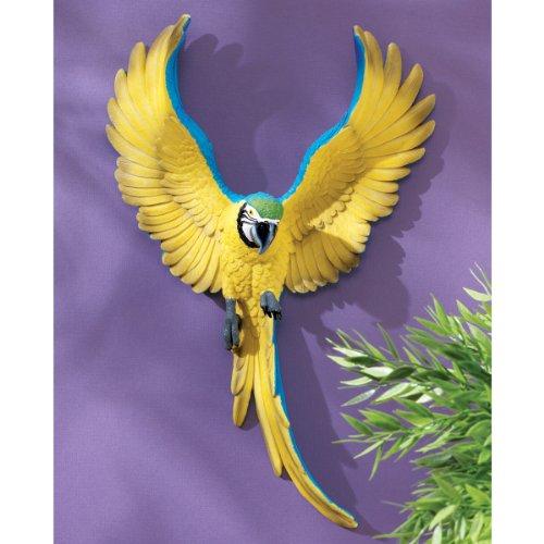 rot Bird Wall Sculpture Statue Figurine Décor (Macaw Sculpture)