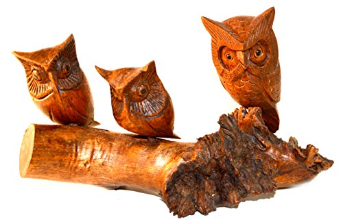 wood carved owl - 6