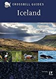 Best Iceland  Books - Icel Review
