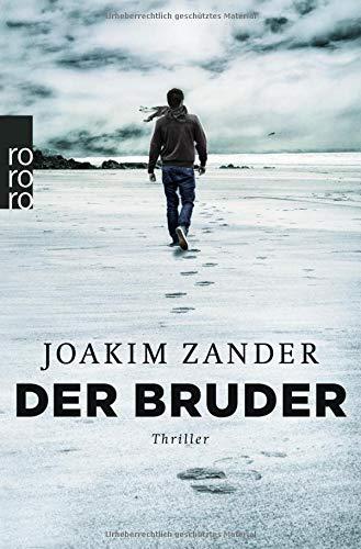 Der Bruder (Klara Walldéen, Band 2)