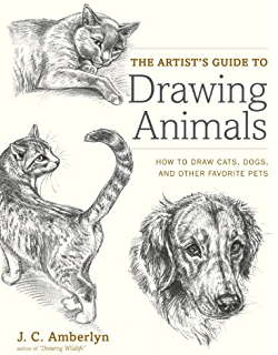 draw 50 cats the step by step way to draw domestic breeds wild