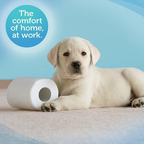 Cottonelle Ultrasoft Bulk Toilet Paper (12456), Standard ...