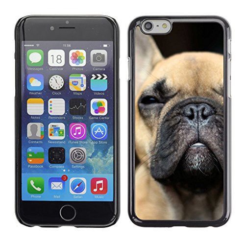 French Bulldog Puppy Dog Boston Terrier - Aluminum Metal&Hard Plastic Back Case Cover - Black - Apple iPhone 6 Plus(5.5 inches) (French Bulldog 6plus Case compare prices)
