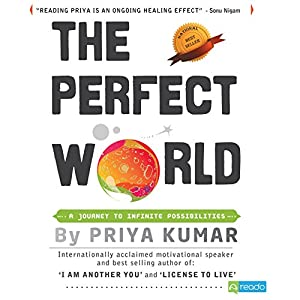 The Perfect World Audiobook