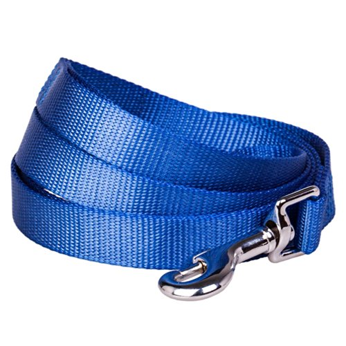 Blueberry Pet 3/4-inch by 5-Feet Better Basic Solid Dog Leash in Bay Blue, Leashes for Medium Dog