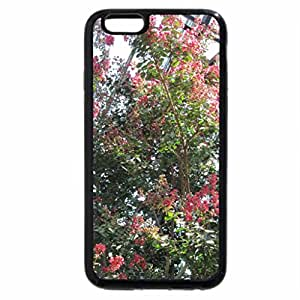 iPhone 6S / iPhone 6 Case (Black) A perfect day at Edmonton garden 20