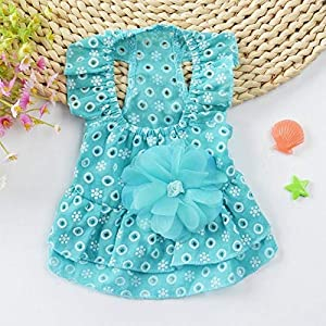 Generic Cute Lace Princess Dress Pet Clothes Spring Small Dog Skirt: Sky Blue, M