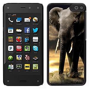 // PHONE CASE GIFT // Duro Estuche protector PC Cáscara Plástico Carcasa Funda Hard Protective Case for Amazon Fire Phone / Elephant Trunk Sunset Africa Indian Tusk /