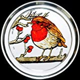 Decorative Hand Painted Stained Glass Paperweight in a Fat Robin Design.