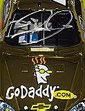 AUTOGRAPHED 2008 Dale Earnhardt Jr. #88 GoDaddy