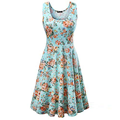 Women's Boatneck Sleeveless Gown Vintage Floral Tea Dress Light Blue