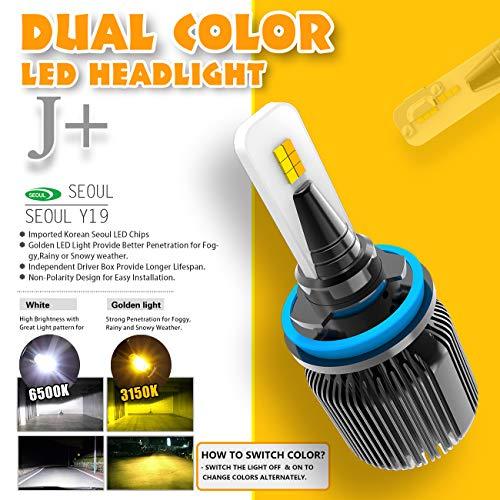 Buy 2000 monte carlo head light