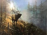 Elk In The Mist LED Canvas