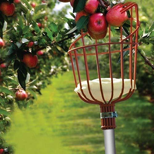 Qaloys Panier de cueilleur de Fruits Maison avec Coussin Cueilleur de Fruits Frais de Jardin