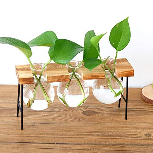 (Hot Sale!DEESEE(TM)1Set Hydroponic Plant Transparent Vase Wooden Frame Coffee Shop Room Decor)