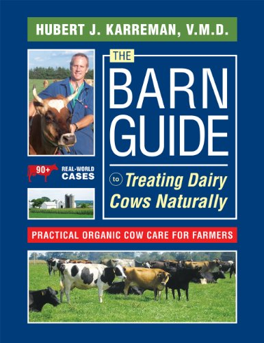 the-barn-guide-to-treating-dairy-cows-naturally-practical-organic-cow-care-for-farmers