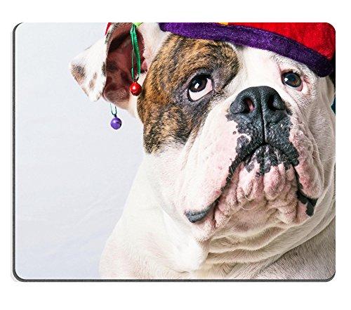 Liili Mouse Pad Natural Rubber Mousepad IMAGE ID: 23065061 beautiful amrican bulldog in a cap close up