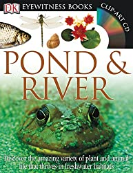 Eyewitness Pond & River (DK Eyewitness Books)