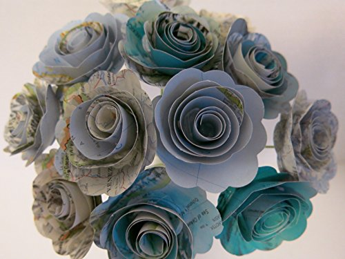 Scalloped World Atlas Roses, 1.5