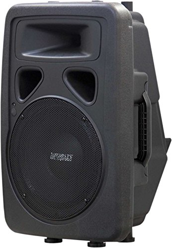 Earthquake Sound DJ-10M 2-Way Monitor/PA Speaker (Black) by Earthquake Sound