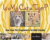 Is My Cat a Tiger?, Jenni Bidner, 1579908152