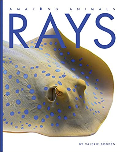 Book Rays (Amazing Animals)