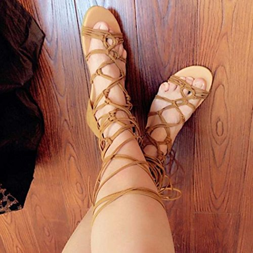 Transer® Damen Römersandalen Sandalen Netz Gürtel Faux-Veloursleder+Gummi Schwarz Rot Braun Sommer Stiefel (Bitte achten Sie auf die Größentabelle. Bitte eine Nummer größer bestellen) Braun