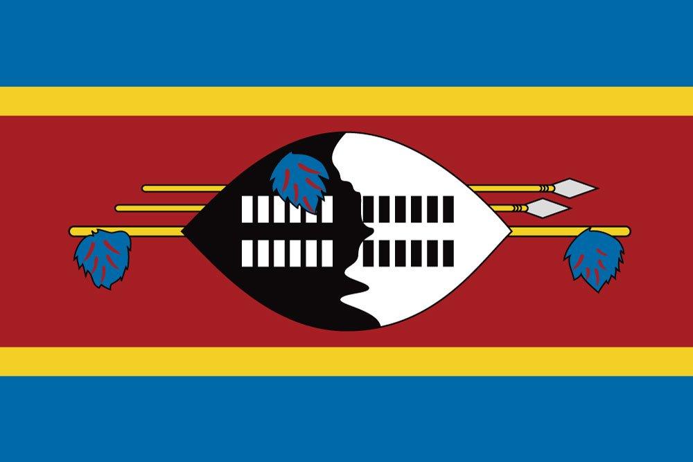 【返品送料無料】 世界の国旗 国旗 エスワティニ(スワジランド) 国旗 [120×180cm B0090ZYUTS 高級テトロン製] B0090ZYUTS, 愛筆屋:fc7b49f2 --- vietnox.com
