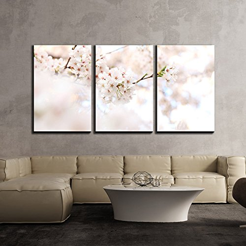 wall26 – 3 Piece Canvas Wall Art – Cherry Blossom in Spring – Modern Home Decor Stretched and Framed Ready to Hang – 16 x24 x3 Panels
