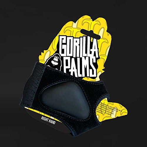Gorilla Palms